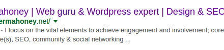 Google descriptions Wordpress SEO Expert